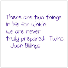 Twin Quotes Adorable 48 Best Funny And Cute Twin Quotes With Images