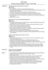 Download Quantitative Analyst / Quantitative Analyst Resume Sample as Image  file