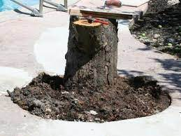 how to create a tree stump table how