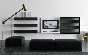 Gallery Images of the TV Storage Unit Design