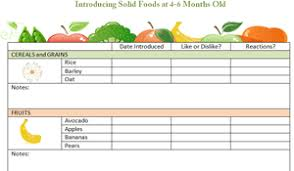4 To 6 Months Food Chart Food For Kimber Baby Food
