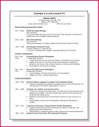 Skill Set Example For Resume Skills Based Resume Skills Examples Of Resumes Skill Set Resume 10