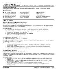 Retail Sales Executive Resume | Krida.info