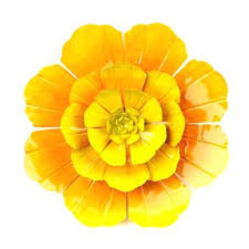 yellow metal flower wall art