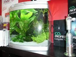 La conduttività in un acquario di acqua dolce