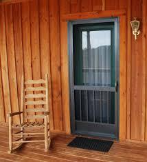 doors captivating front door screens screen doors black door plant rug cream wall