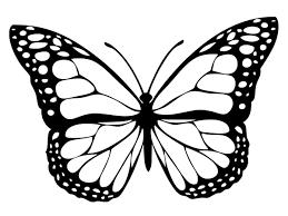 Coloriage princesse ariel sur un rocher dans la mer pour. Coloriage Papillon 40 Dessins A Imprimer Gratuitement