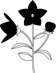夏の花1 17 キキョウ 花の無料イラスト素材 イラストポップ