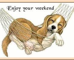 Enjoy your weekend | Toluna