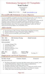 CV Example for Volunteering  MyperfectCV Wikipedia