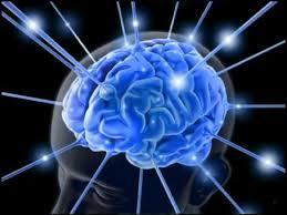 Image result for inner net
