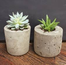 d i y cement planters