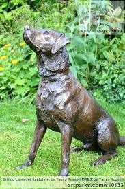 labrador garden statue garden statue chocolate retriever chocolate labrador garden statues