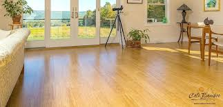 interior natural floors bamboo reviews elegant cali fossilized 5 in eucalyptus solid hardwood intended