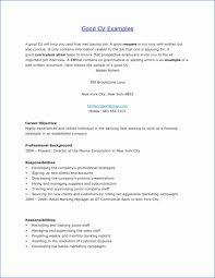 Training Specialist Resume 37 It Specialist Resume Riverheadfd