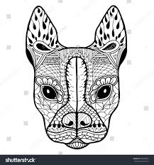 Small Picture Boston Terrier French Bulldog Blank Adult Stock Vector 550099891