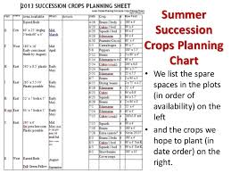 Succession Planting For Continuous Vegetable Harvests 2015