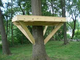 Small tree house blueprints Mini Tree Fort Platform Pinterest 79 Best Tree House Images On Pinterest Tree Houses Treehouse And
