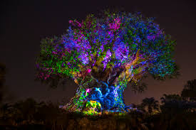 Animal Kingdom Rivers Of Light Dining Package Disneys Animal Kingdom After Dark Night Show Travelingmom