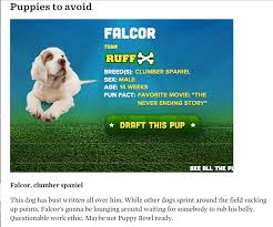 puppy bowl 2015 falcor. Simple Bowl Falcor Went On To Score A Puppy Bowl Record Four Touchdowns With 2015 L