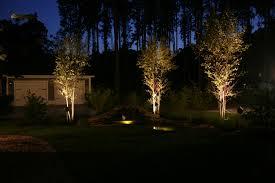 landscape lighting trees. news landscape lighting trees t