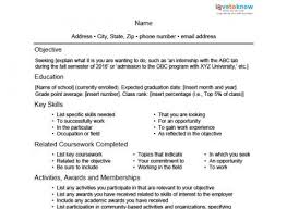skill-based student resume