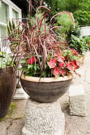 container garden design. Exellent Garden Container Garden And Design A