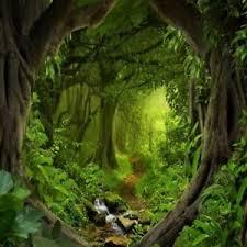 Details About 10x10ft Large Green Wonderland Forest Background Backdrops Studio Photo Props