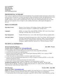 it skills resume resume format pdf it skills resume breakupus interesting hybrid resume format combining timelines and skills dummies captivating imagejpg