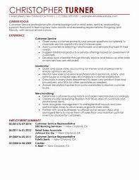 Sales Associate Resume Template Luxury Retail Sales Resume Samples