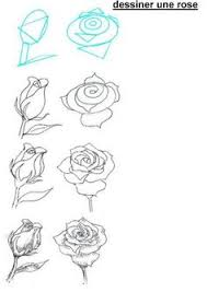 Small Picture Wonderful Idea For Drawing A Beautiful Rose Rose Architecture