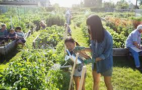 community gardening. Gardening Community Rodale\u0027s Organic Life