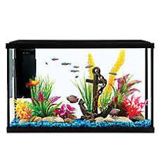 petsmart goldfish tank.  Petsmart Grreat Choice Aquarium Starter Kit For Petsmart Goldfish Tank PetSmart