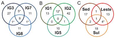 Identity Venn Diagram Venn Diagram At 97 Identity