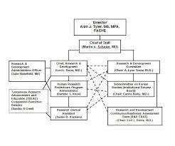 Organizational Chart Classy Chain Of Command Chart Metalrus