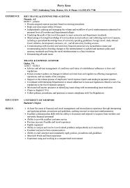 Auditor Job Description Resumes Travel Auditor Resume Samples Velvet Jobs