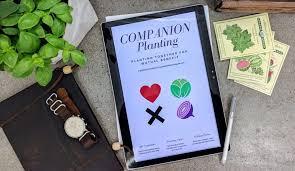 Kale Companion Planting Chart Companion Planting Charts Garden Gadget