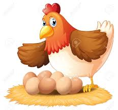 chicken laying eggs clipart. On Chicken Laying Eggs Clipart