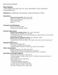 Resumerse Objective Statement Student Rn Career Change Sample