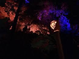 spooky lighting. van cortlandt manor spooky lighting in the trees e
