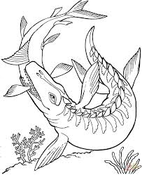 Small Picture Mosasaurus Dinosaur coloring page Free Printable Coloring Pages