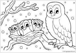 Winter Snowy Owl Coloring Page Pages Pinterest Printable For Kids