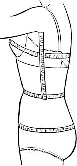 Bust Waist Hip Measurements Wikipedia