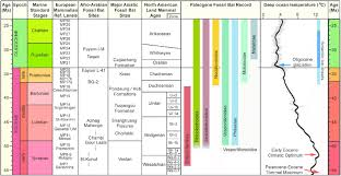 Correlation Chart Of The Paleogene Fossil Bat Record With