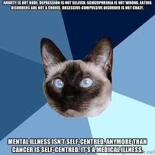 Wednesday 24 December 2014 Meme Images « Chronic Illness Cat via Relatably.com