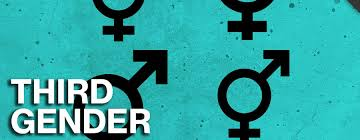 sample essay on third gender in the usa