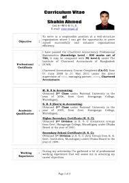 Curriculum Vitae Professional Template Pdf Educat Saneme