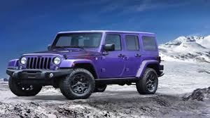 2018 jeep wrangler backcountry purple s back