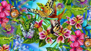 Colorful Rainbow Butterfly Wallpaper