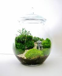 Asian Landscape Moss Terrarium with Miniature Path, Pagoda & Tree in a  Large Decorative Glass